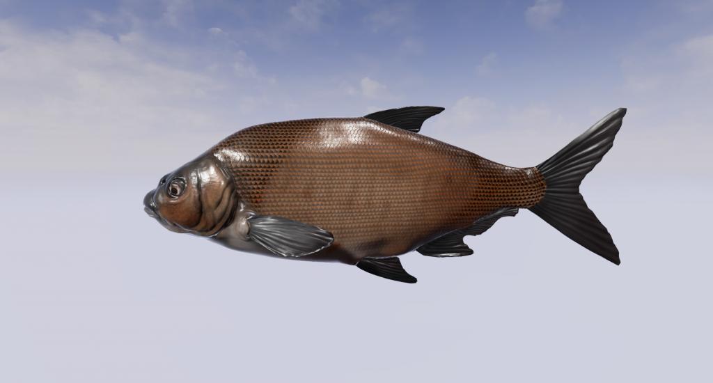 Leszcz - Dovetail Games Fishing